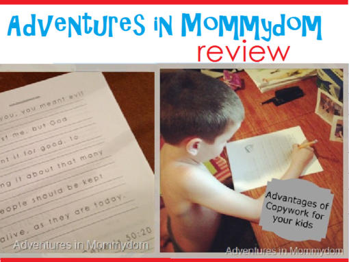 Adventures in Mommydom Review