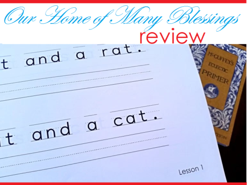 Our Home of Many Blessings Review